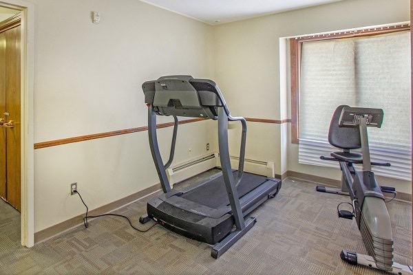 Sequoia Exercise 600x400