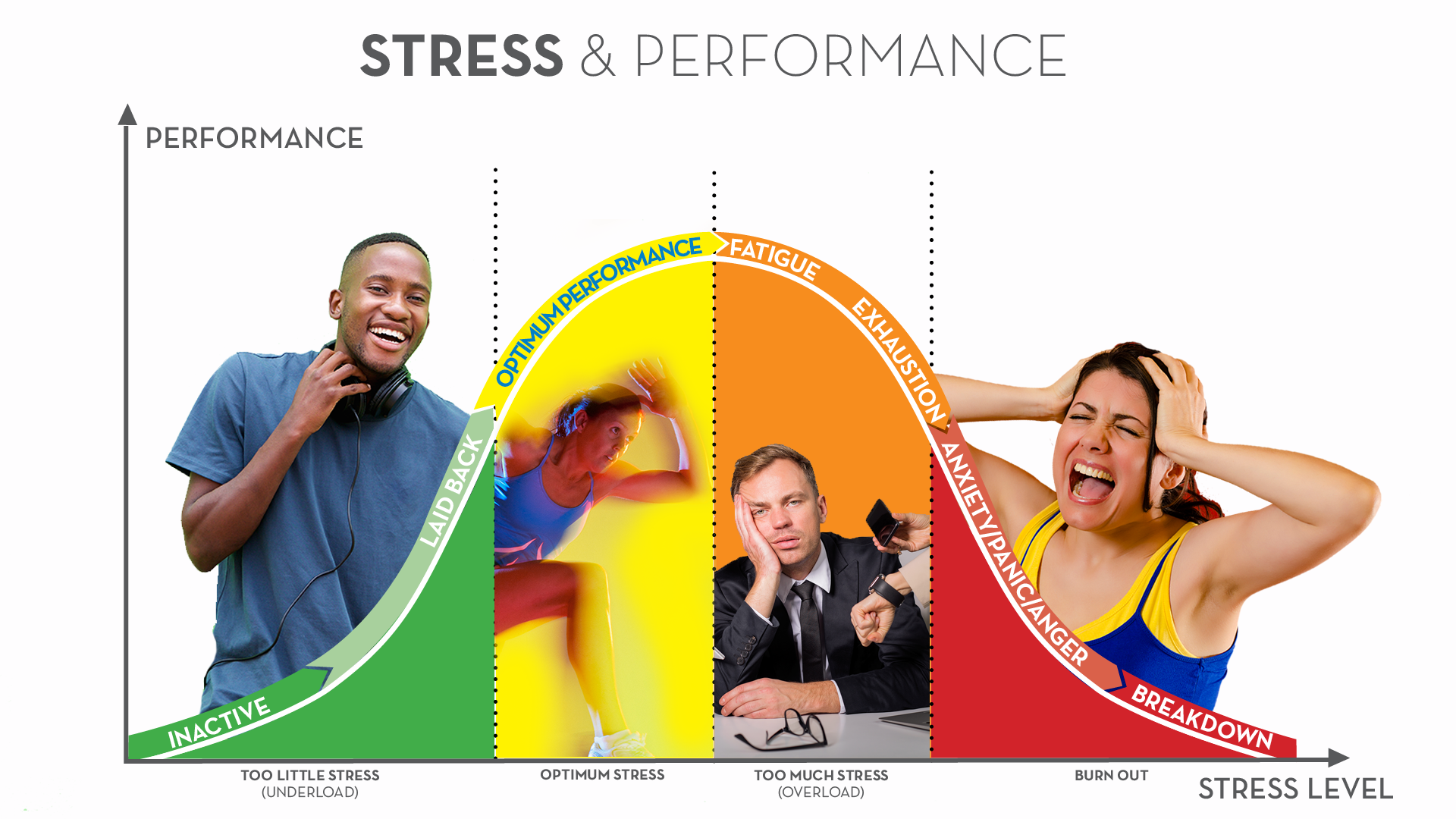 Stress & Performance Curve